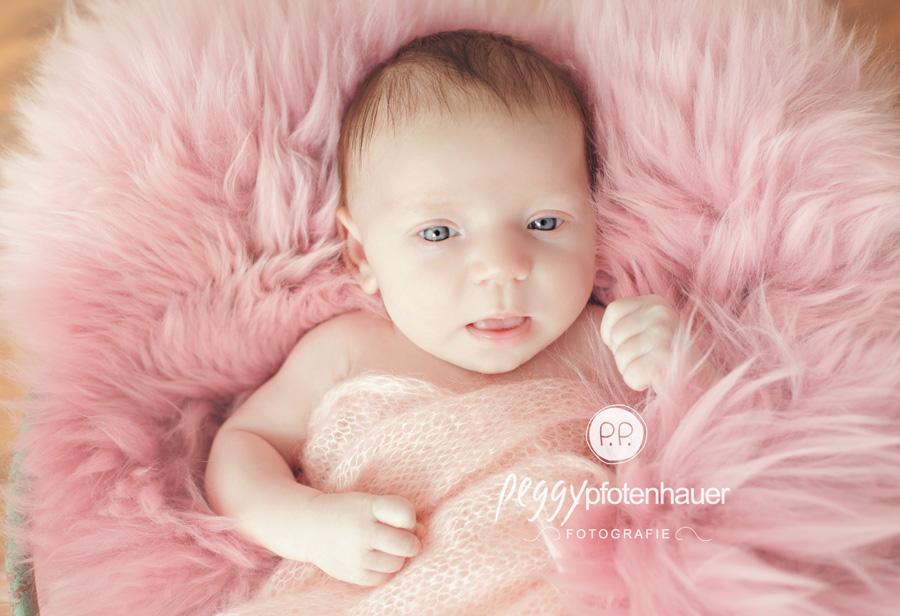 Babyfotos Bamberg, zauberhafte Babyfotos, Anne Gedes