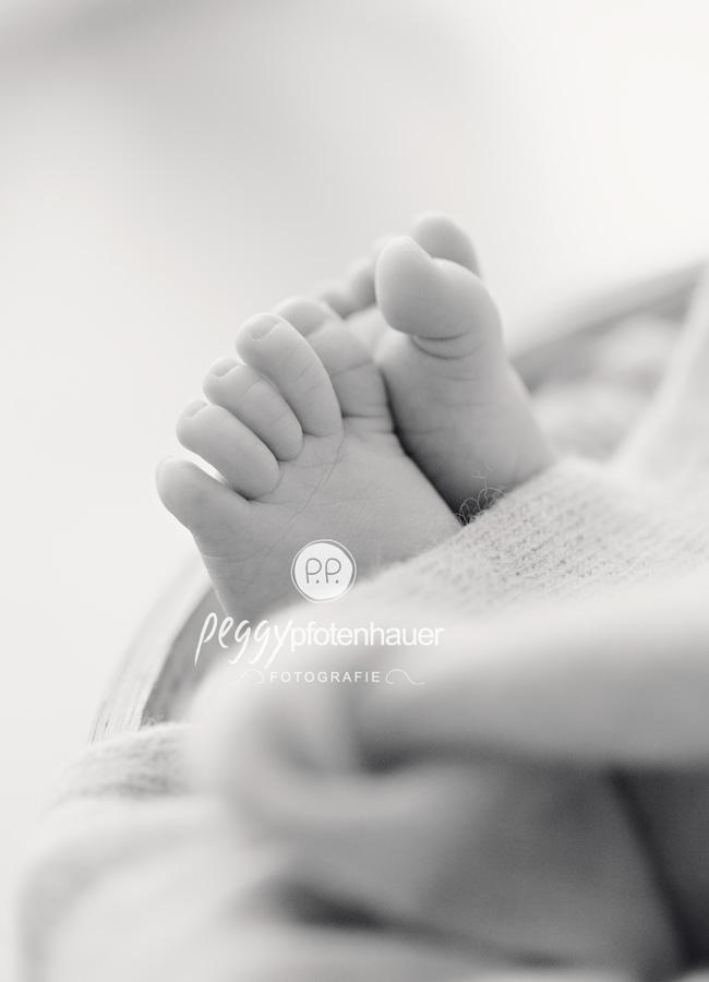 Neugeborenenfotos Bamberg, Babyfotos Bamberg, Babyfotograf Bamberg, Peggy Pfotenhauer, süße Babybilder
