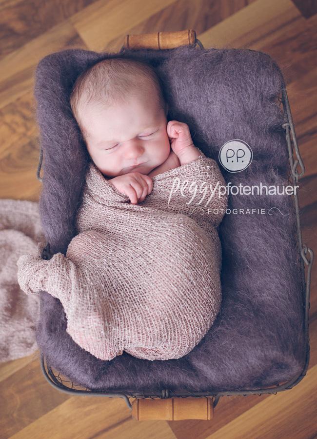 Babyfotos Bamberg, Babyfotograf Bamberg, Babybilder Bamberg, Babyfotografie Bamberg, Babyphotograf Bamberg