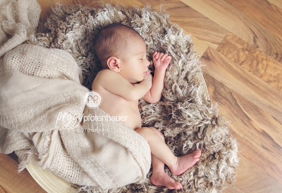 Fotos von Babies Bamberg, Babybilder Bamberg, Babyfotografie Franken