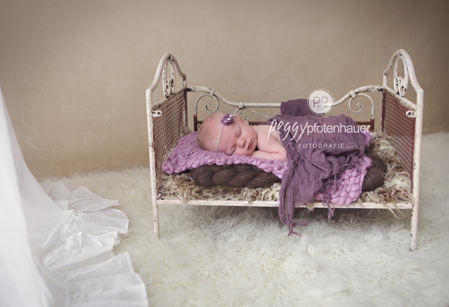 Babyfotos Bamberg, Babyfotograf Bamberg, Babyfotografie Bamberg, Babyfotos Erlangen, Babyfotograf Forchheim