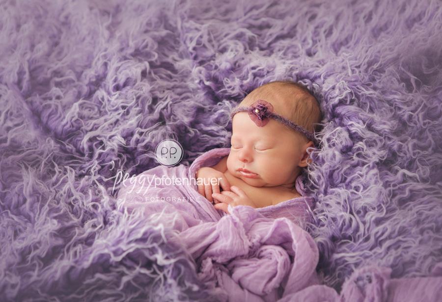 Babyfotos Bayreuth, Babyfotografie Bayreuth, Babyfotograf Bayreuth, Babybilder Bayreuth