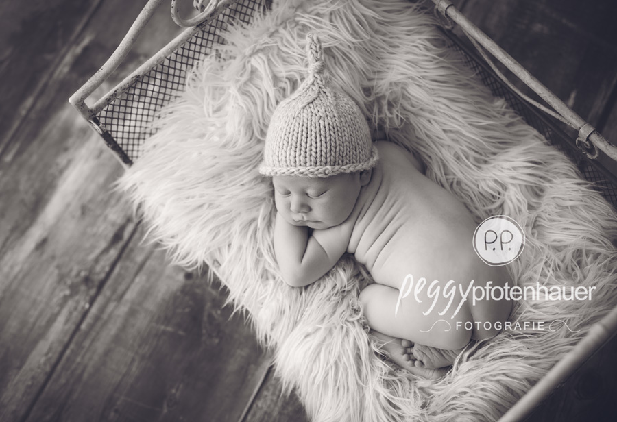 Babyfotos Forchheim, Babyfotograf Haßfurt, Babyfotos Eltmann