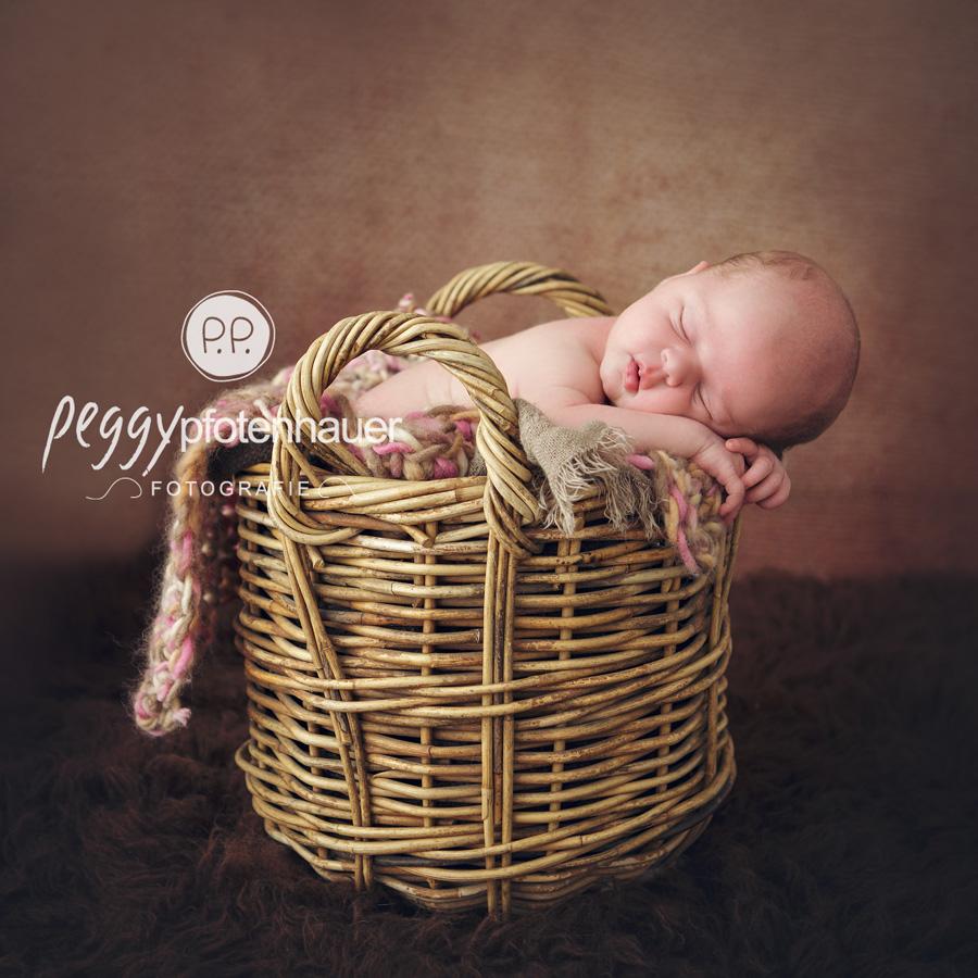 Babyfotos Forchheim, Babyfotografie Erlangen, Babyfotos Bamberg, Babyfotografie Bamberg