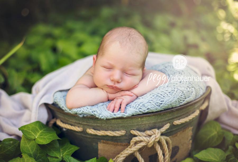 Babyfotos im Freien Bamberg, Babyfotos in der Natur Bamberg, Babyfotos draußen