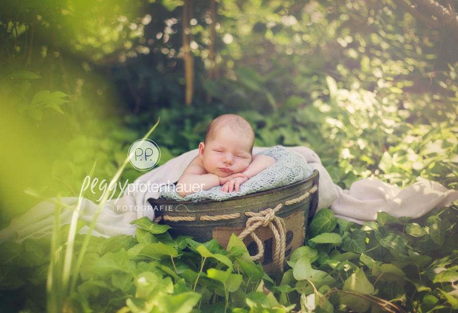 Neugeborenenfotos in der Natur Bamberg, Neugeborenenfotos im Freien