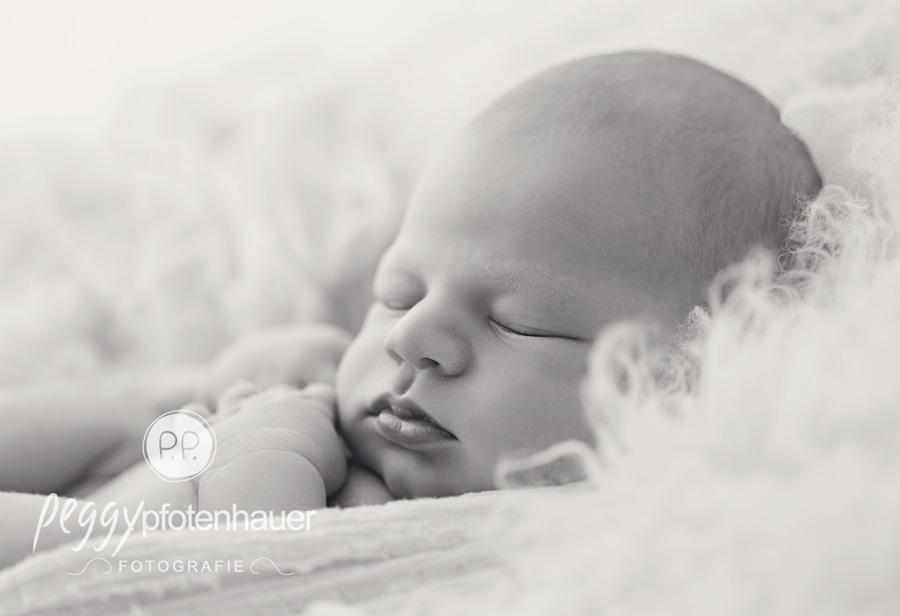 Neugeborenenfotos Erlangen, Babyfotos Erlangen, Babyfotograf Erlangen