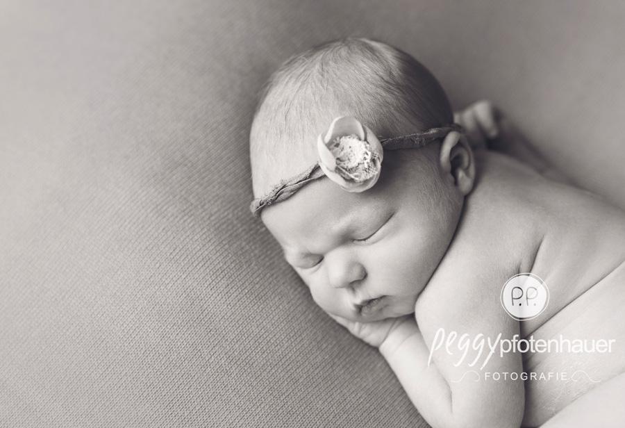 Babyfotograf Bamberg, Babyfotografie Erlangen, Babybilder Coburg, Babyfotos Schweinfurt