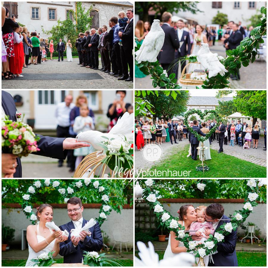 Hochzeitsbilder Bamberg, Hochzeitsfotograf Erlangen