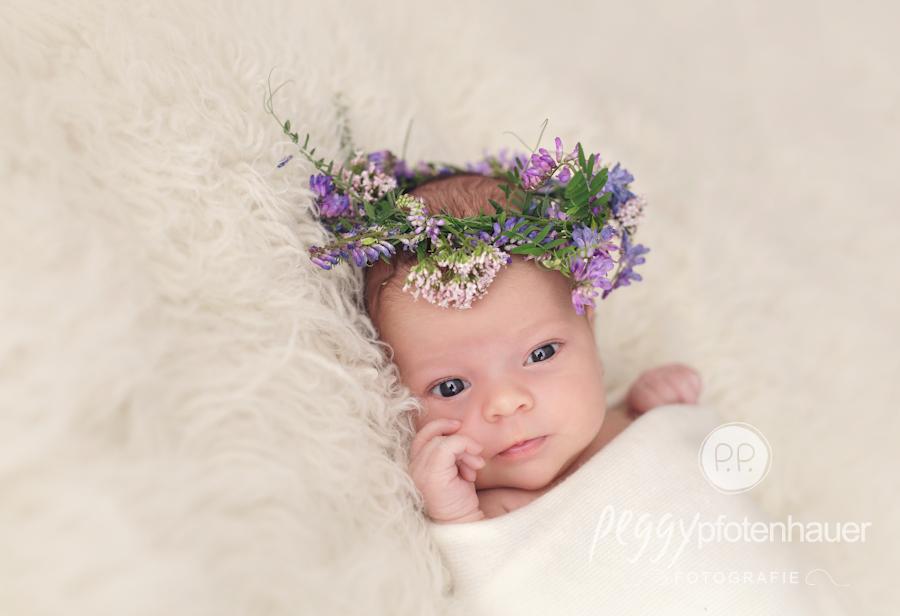 babyfotograf-erlangen