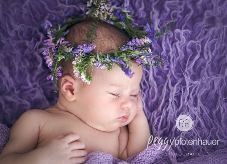 babyfotografie-bamberg