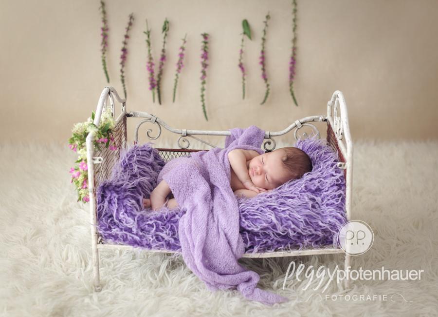 babyfotos-hasfurt-babyfotos-forchheim
