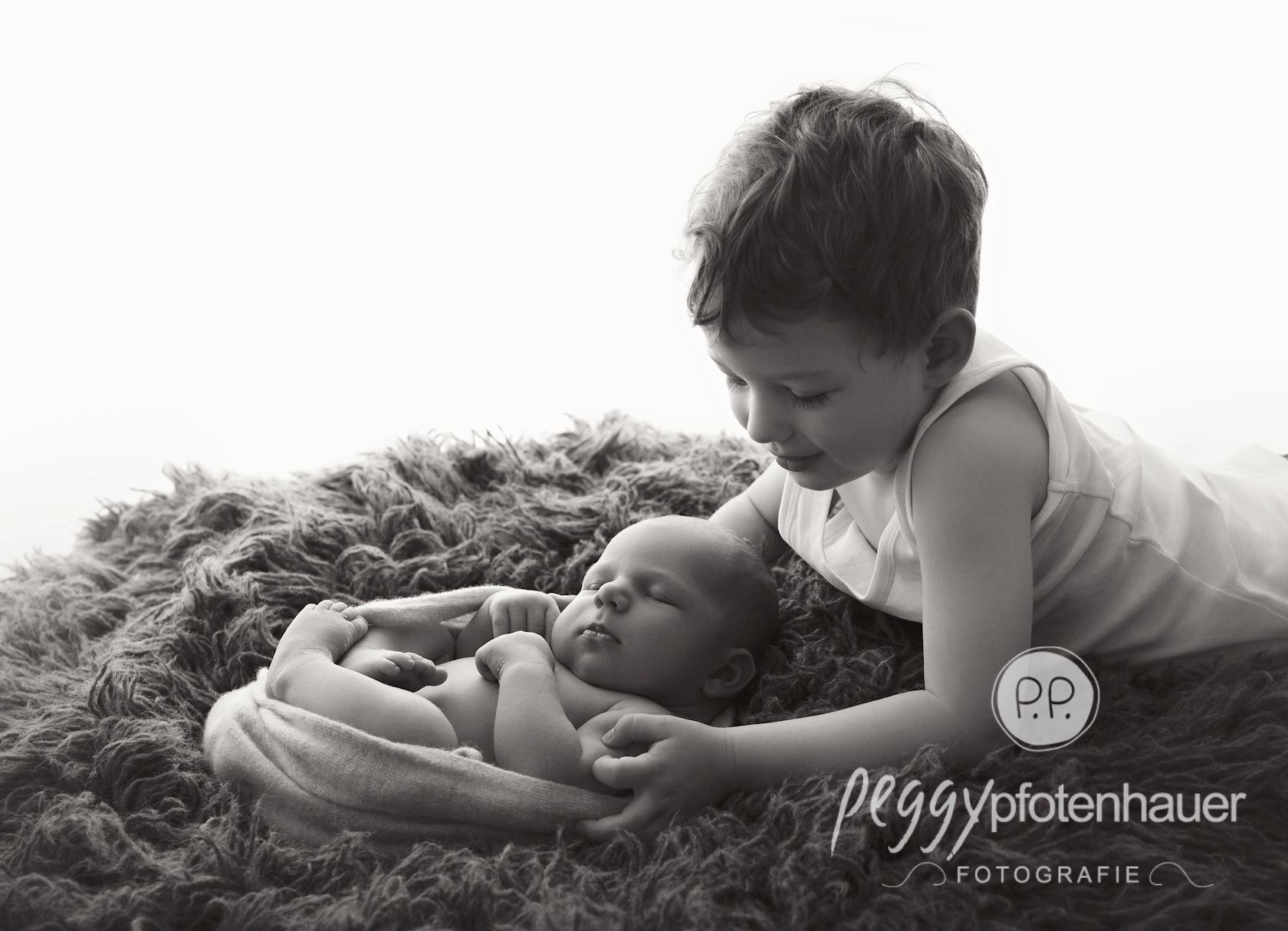 neugeborenenbilder peggy pfotenhauer fotografie