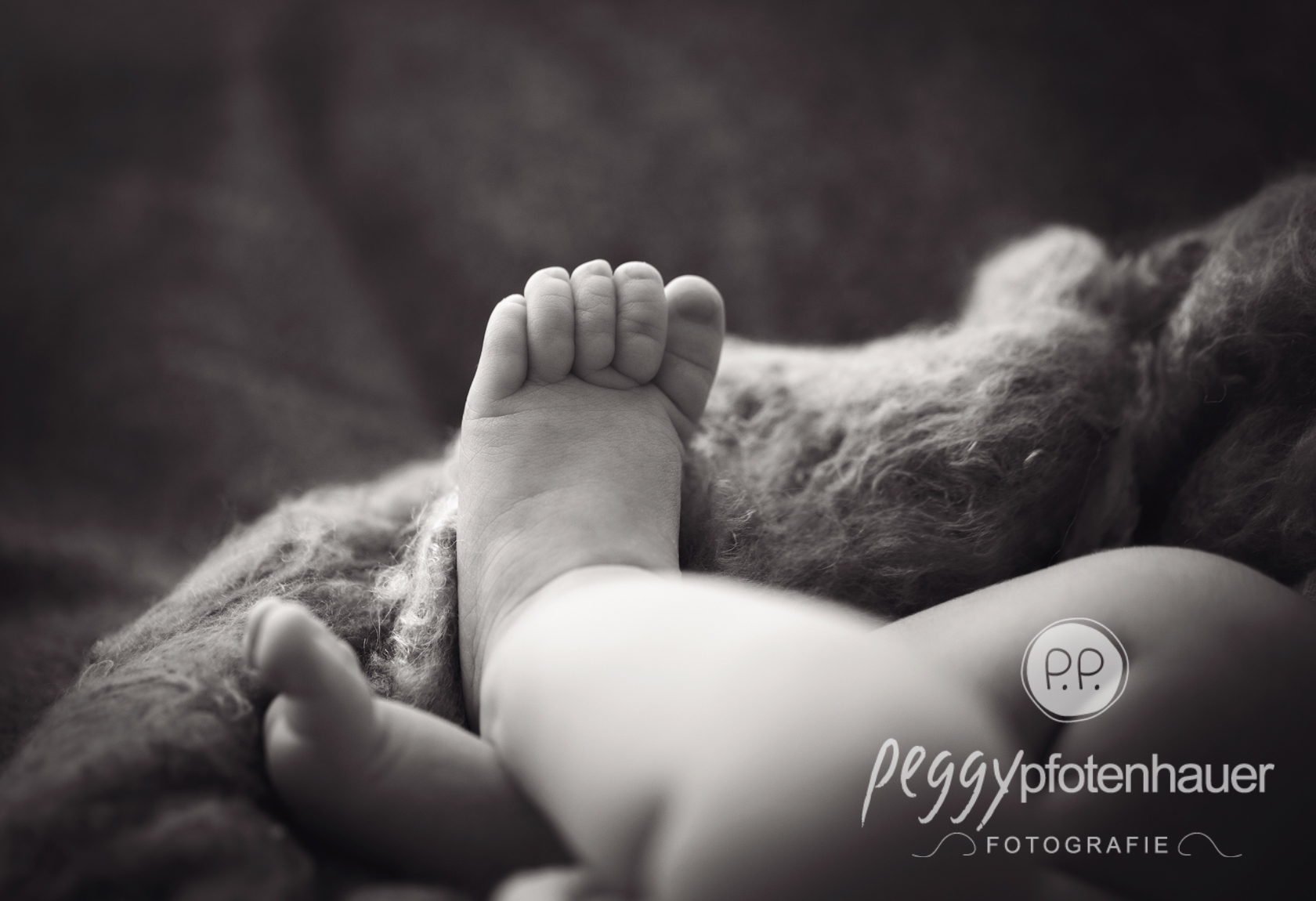 Babyfotos Nürnberg - Peggy Pfotenhauer Fotografie