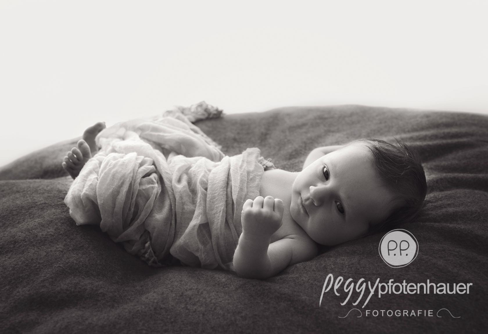 newborn fotos Bamberg