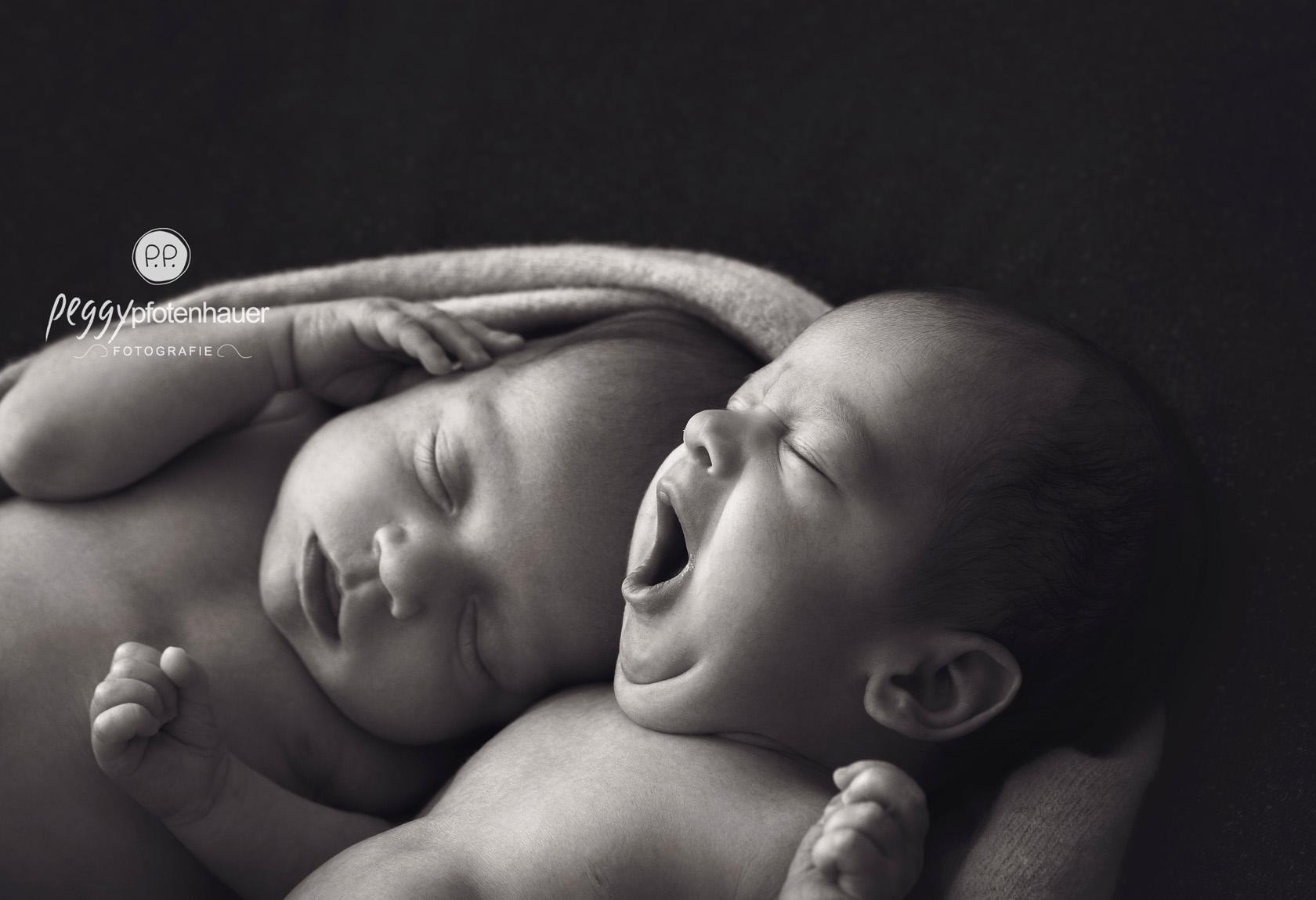 newborn Fotograf Bamberg