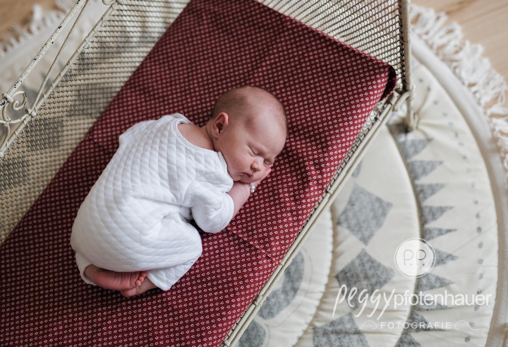 Neugeborenenphotos Peggy Pfotenhauer Fotografie