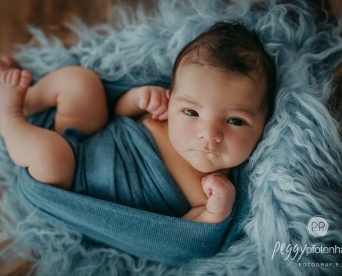 Newbornfotos Hirschaid