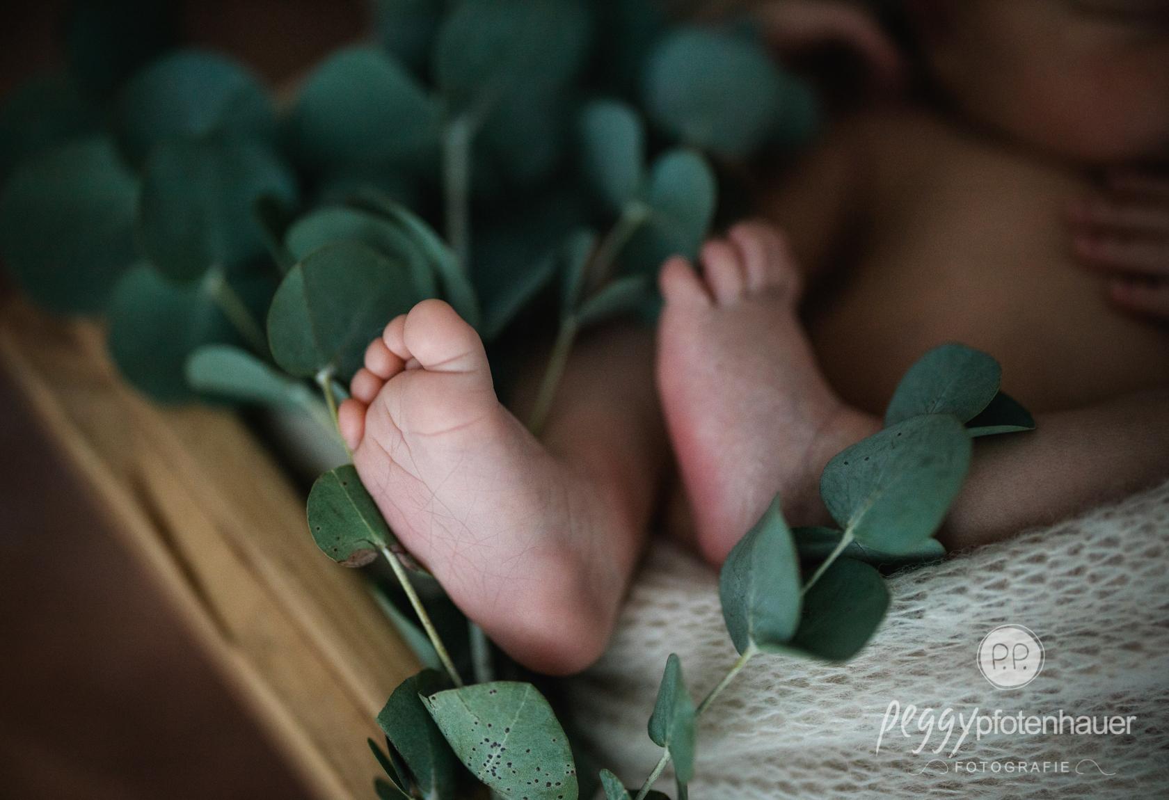 Babyfotograf Kronach