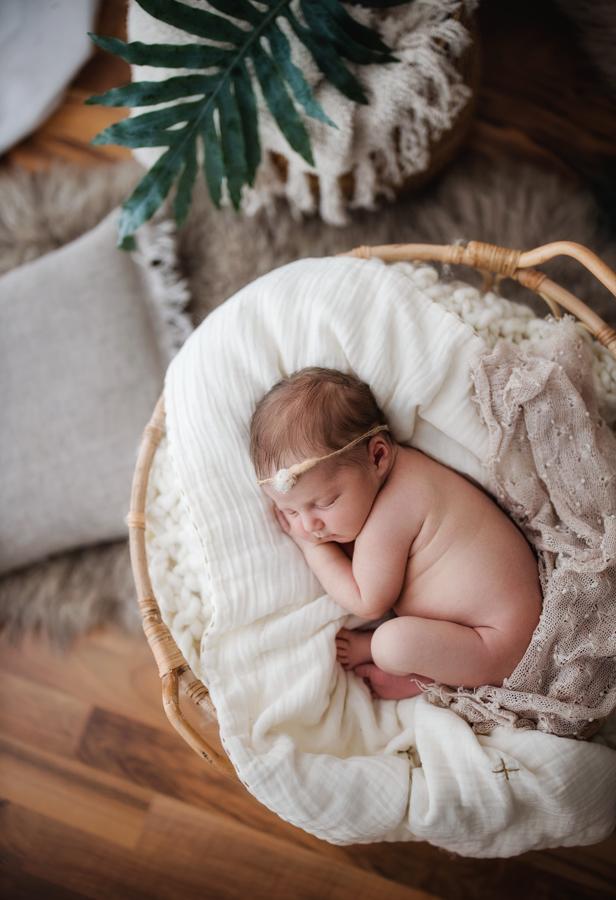 Newborn Fotos in Naturtönen