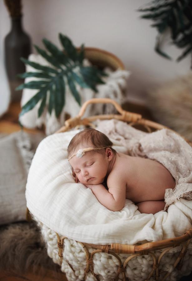 Babybilder in Naturtönen