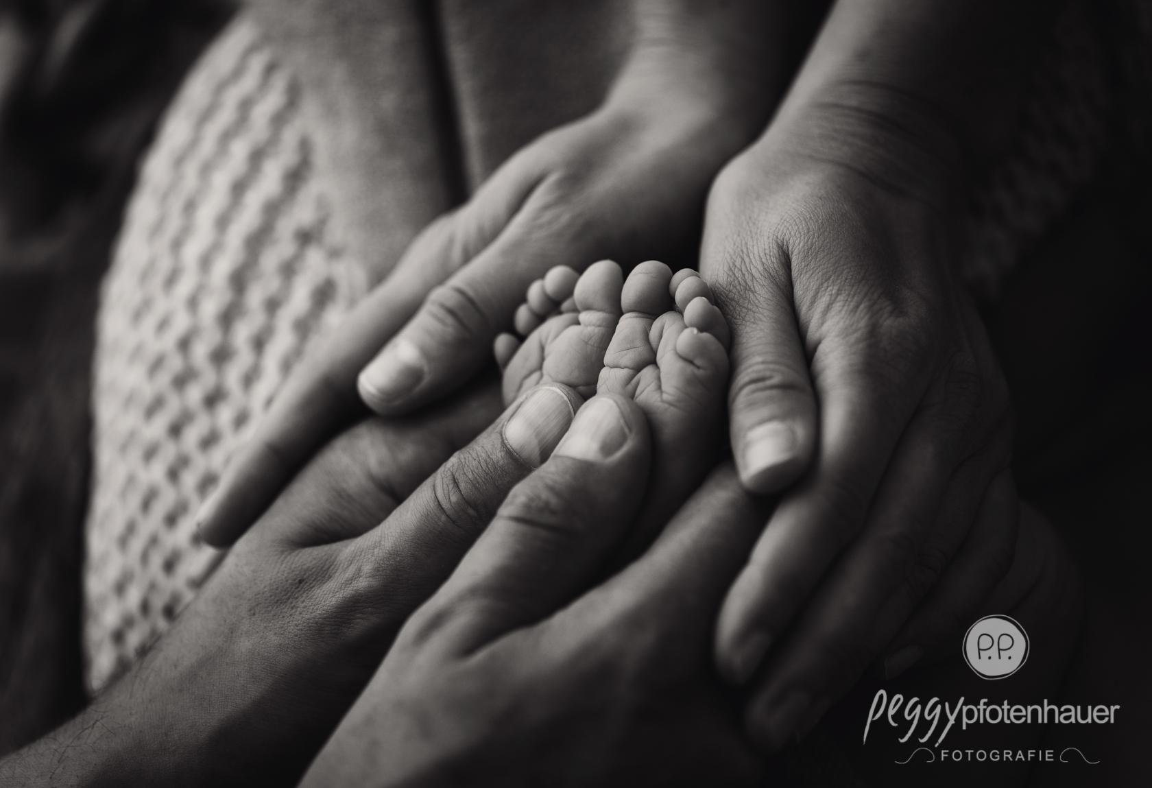 stilvolle Newbornbilder