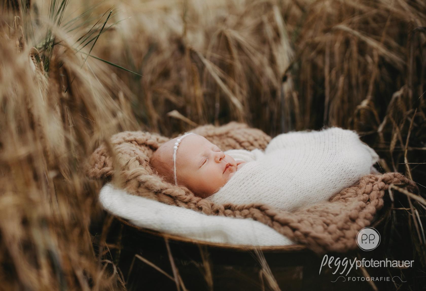 Babyphotograf Bamberg