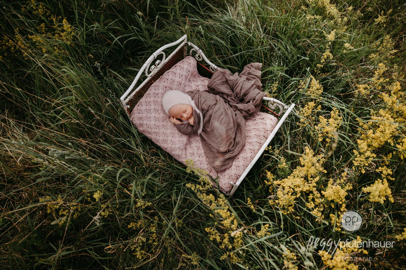 Newbornfotos in der Natur
